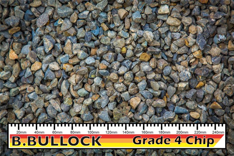 Grade 4 Chip