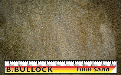 Sand 1mm